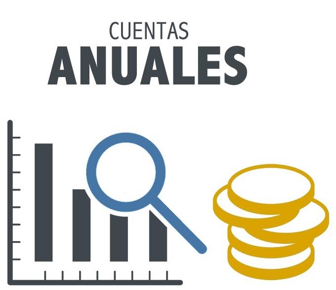 Termini per a l'aprovació dels comptes anuals de l'exercici 2017