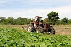 Hacienda reduce módulos del IRPF a agricultores para hacer frente a adversidades climáticas y de mercado